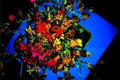 laser_scan